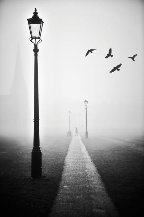 Blackheath Fog III
