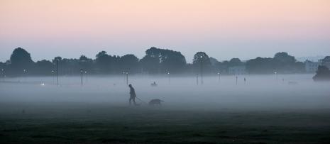 Blackheath Mist II