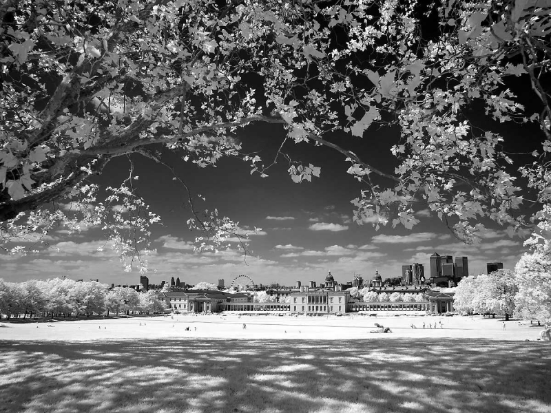 Greenwich Park Infra Red