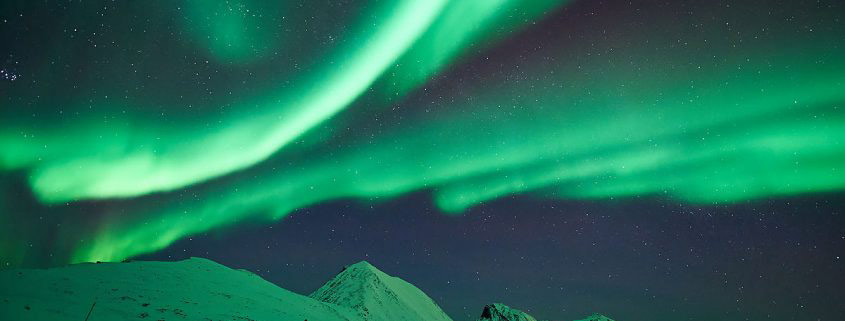 Northern Lights XXIX