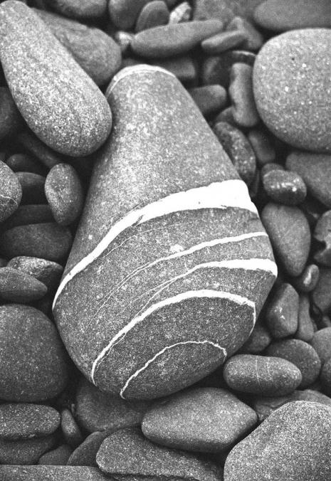 White Striped Rock