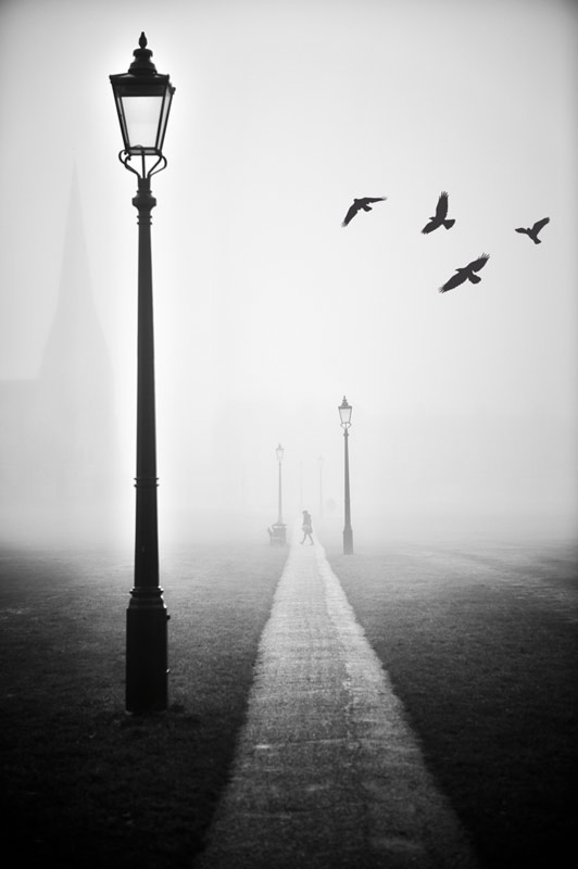 Blackheath Fog Mike Curry Landscape Photography