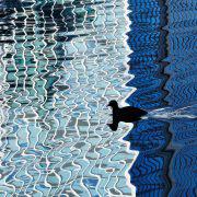 Canary Wharf Reflections17